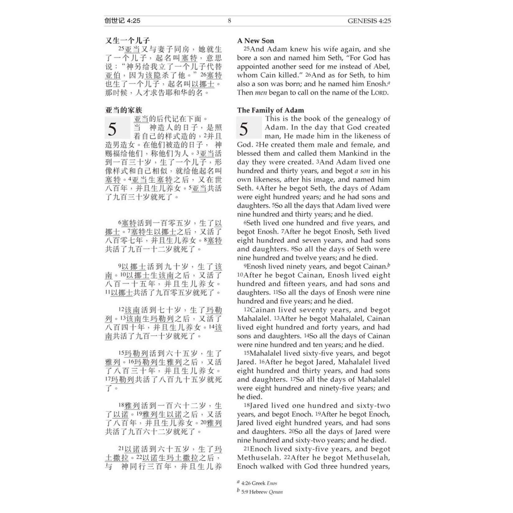漢語聖經協會 Chinese Bible International 聖經.中英對照.和合本/NKJV.黑色仿皮面.金邊.標準本(簡體) Holy Bible - CUV / NKJV - Chinese / English (Black Leather Gilt Edge) Simplified Chinese