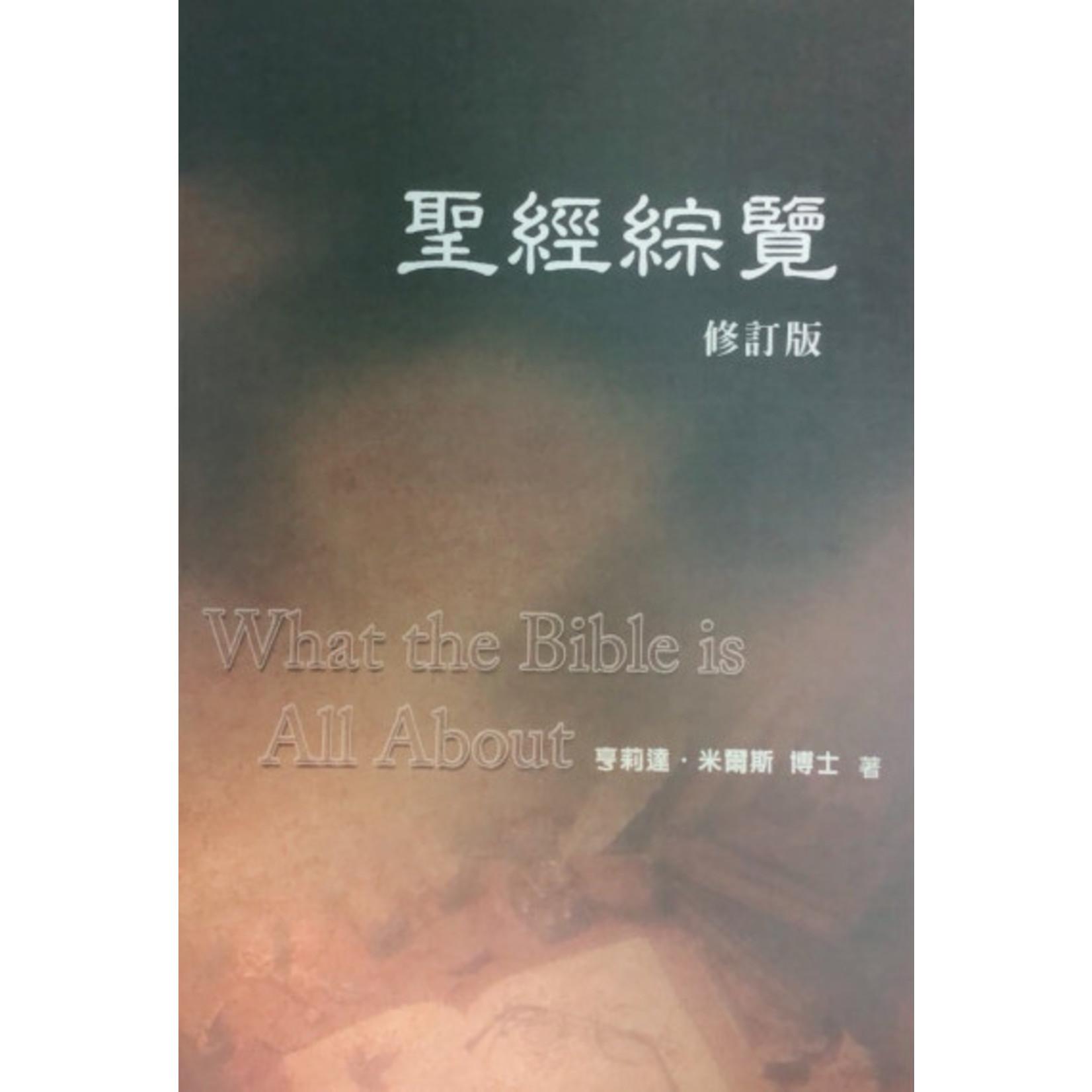 中國主日學協會 China Sunday School Association 聖經綜覽(修訂版) What the Bible is All About