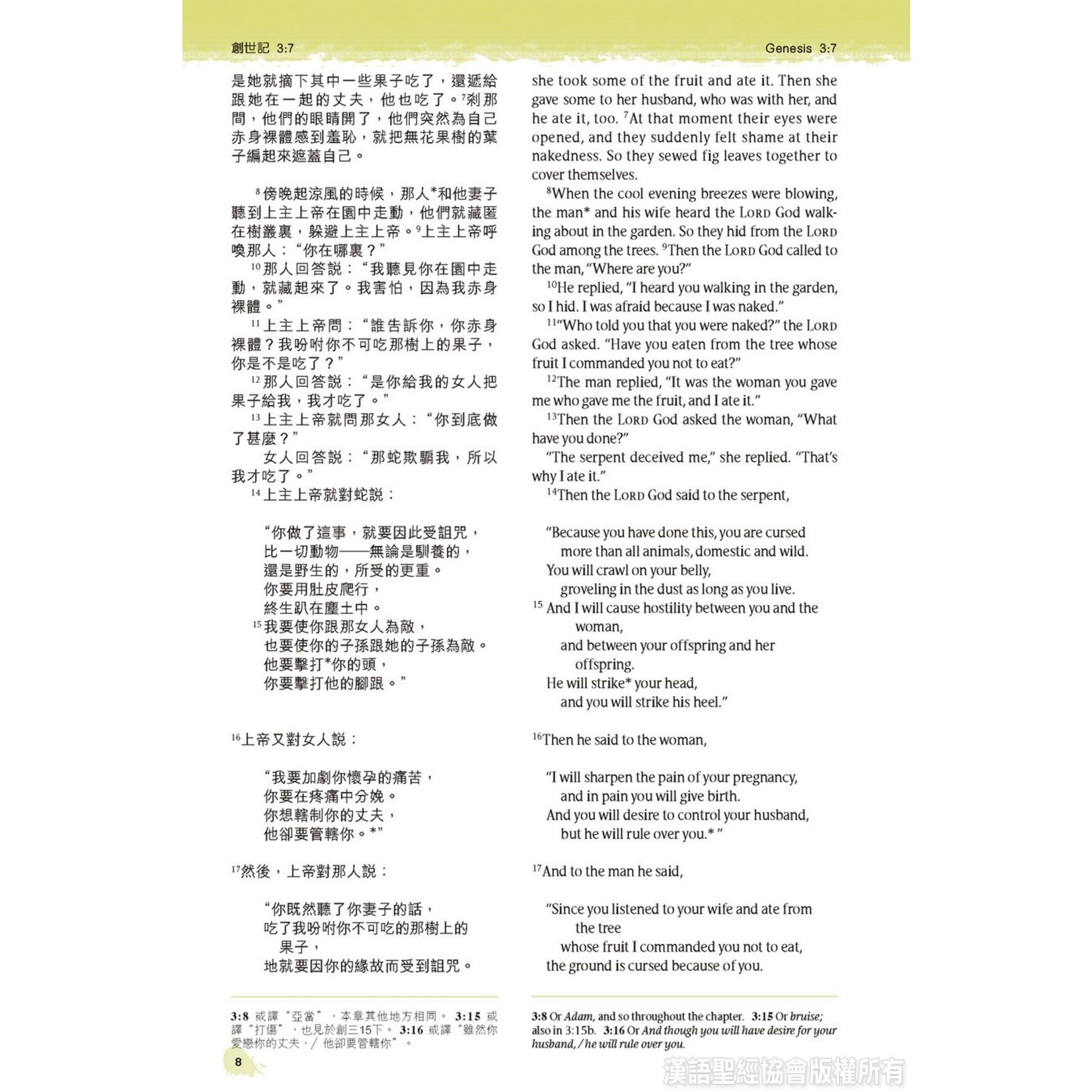 漢語聖經協會 Chinese Bible International 聖經.中英對照.新普及譯本/NLT.碧藍皮硬面.銀邊(繁體) Holy Bible, CNLT/NLT, Traditional Chinese/English, Hardback coated with Imitation Leather, Turquoise, Silvering
