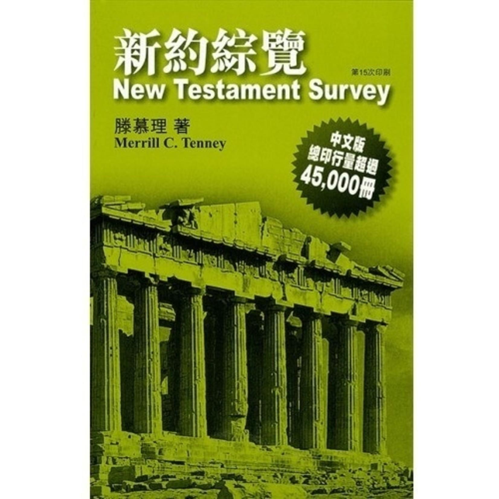 宣道 China Alliance Press 新約綜覽 New Testament Survey