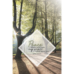 B&H Publishing Group Bulletin - My Peace I Give unto You (Funeral) (Pkg 100)
