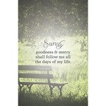 B&H Publishing Group Bulletin - Surely Goodness and Mercy Shall Follow Me Servant (Funeral) (Pkg 100)
