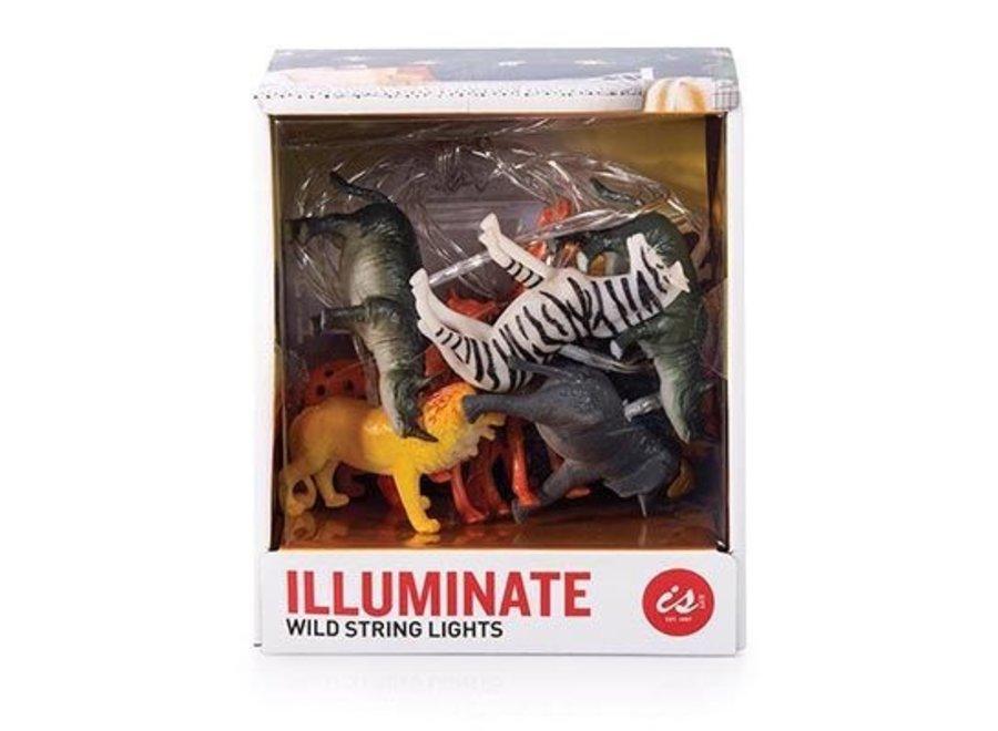 Illuminate - Wild String Lights
