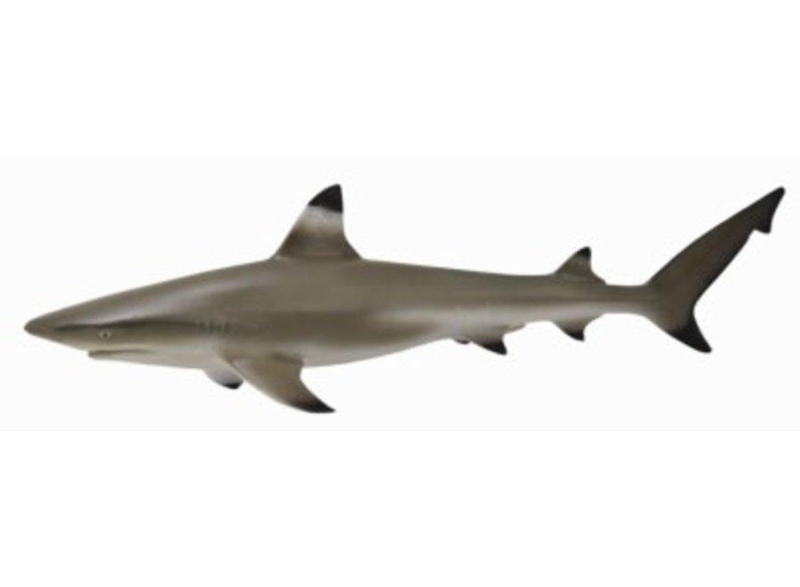 Collecta Blacktip Reef Shark