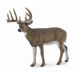 Collecta White- Tailed Deer