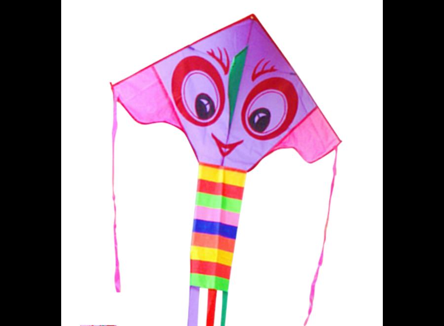 Bright Eyes Kite