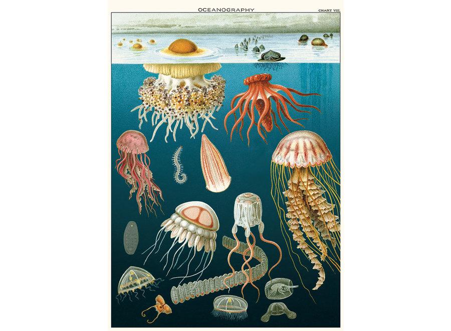 Cavallini Poster/Gift Wrap - Jellyfish