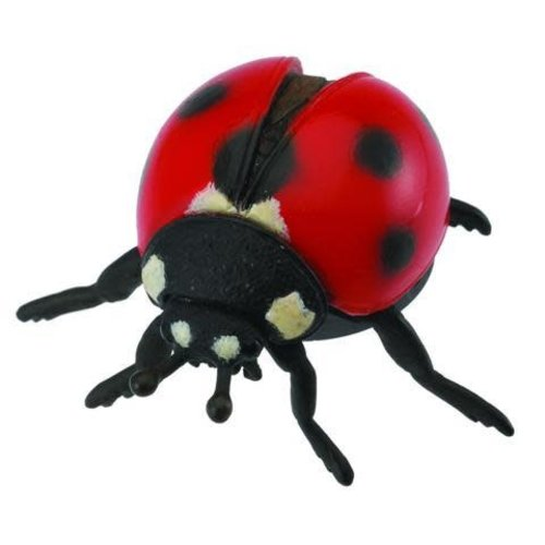 Collecta Ladybird Collecta