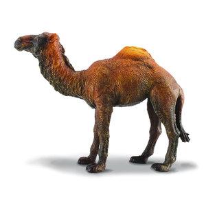 Collecta Dromedary Camel
