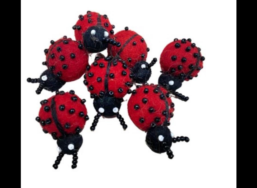 Himalayan Felt Ladybug