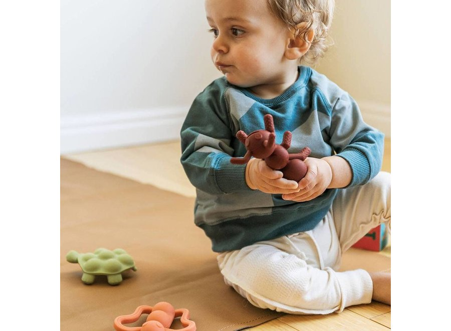 Ant-isipation Teether