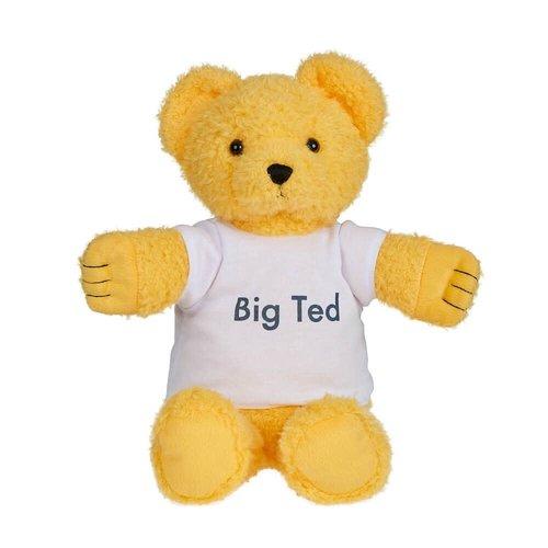 Big Ted Plush