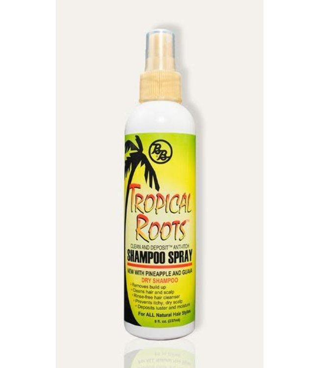 B & B Tropical Roots Dry Shampoo Spray 8oz