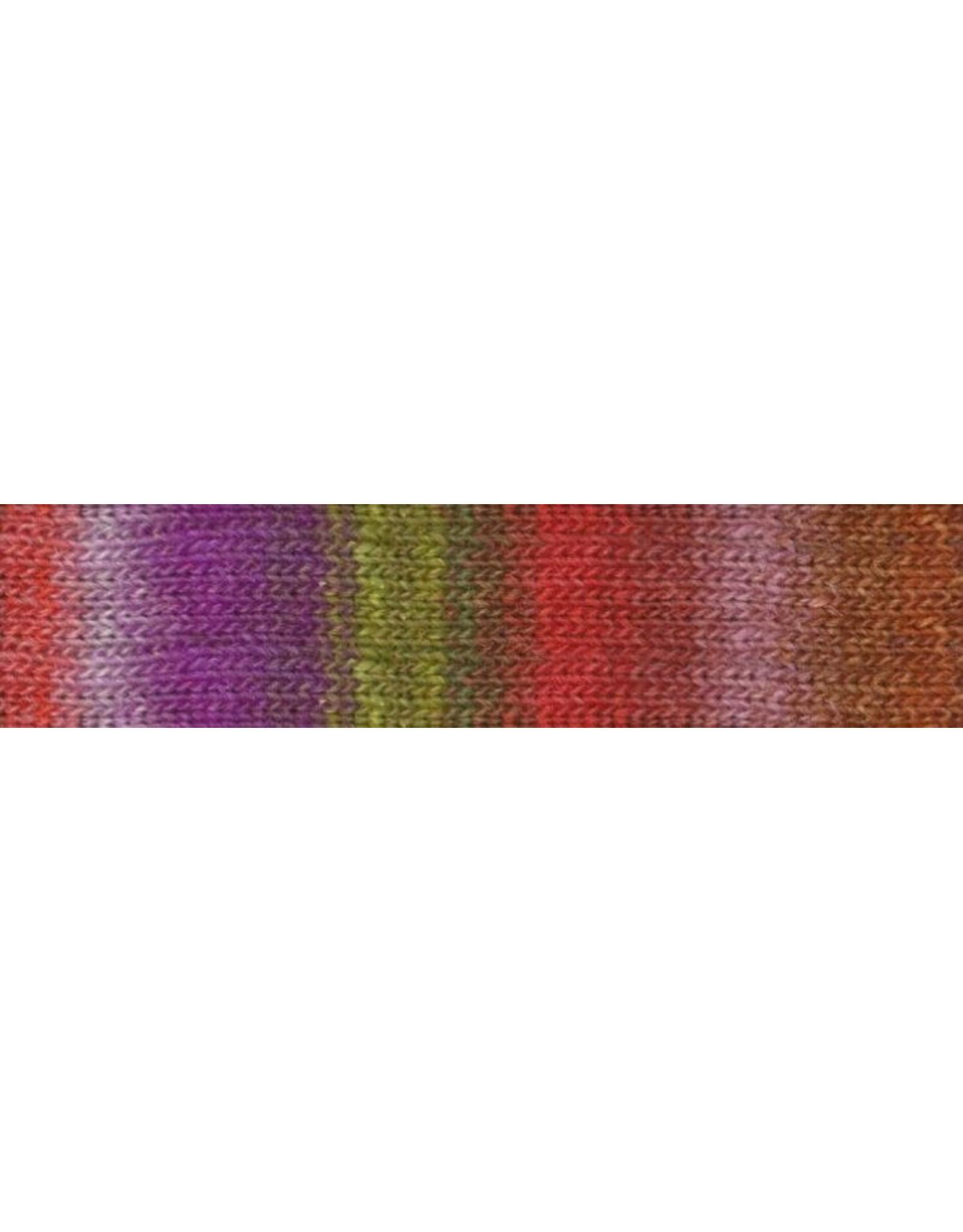 Noro Noro: Hyacinth Stitch Shawl Kit,
