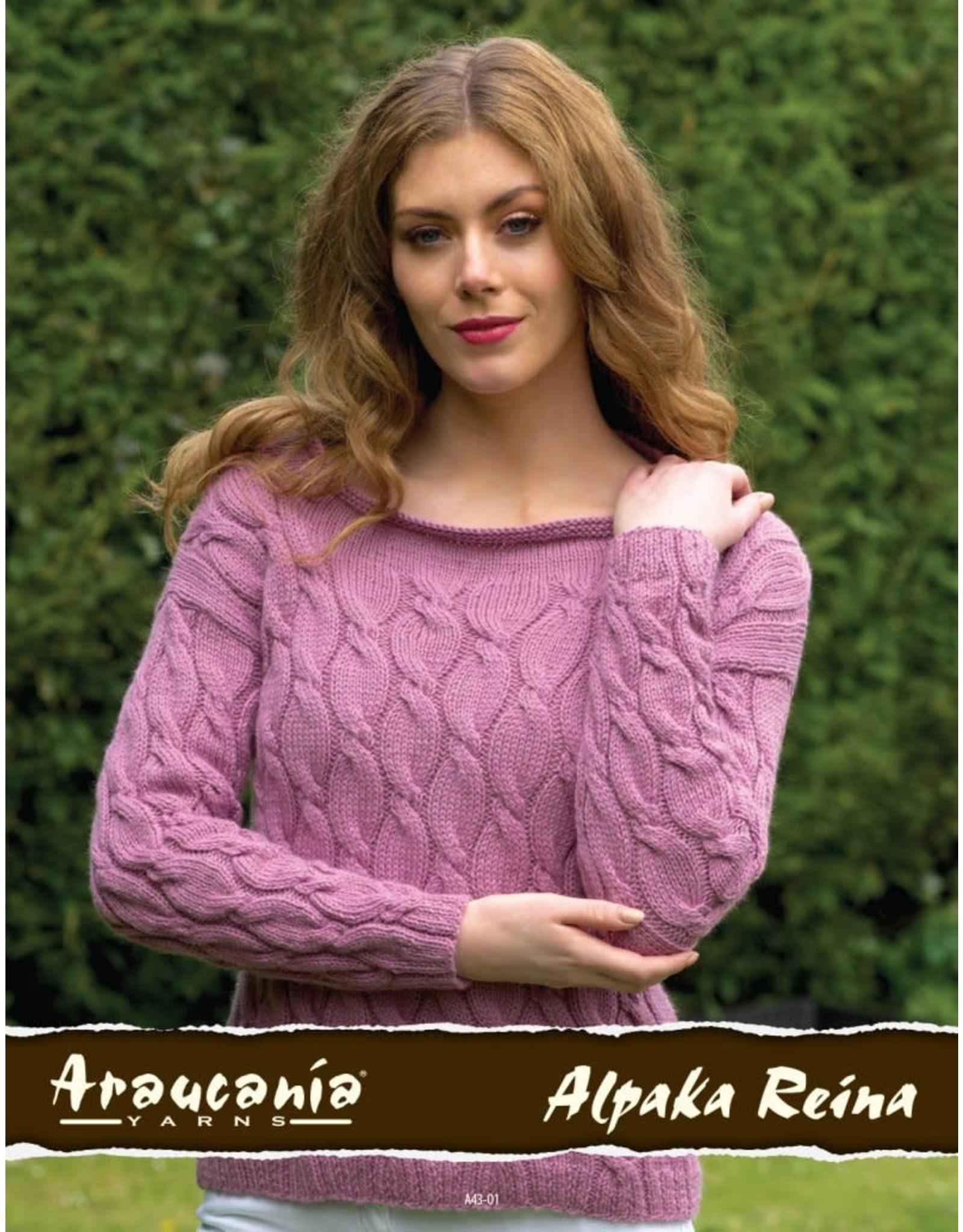 Araucania Yarn Araucania: Lydia Jumper Kit,