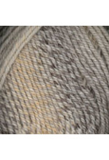 Plymouth Yarn Plymouth: Encore Worsted Colorspun (Drift & Shade),