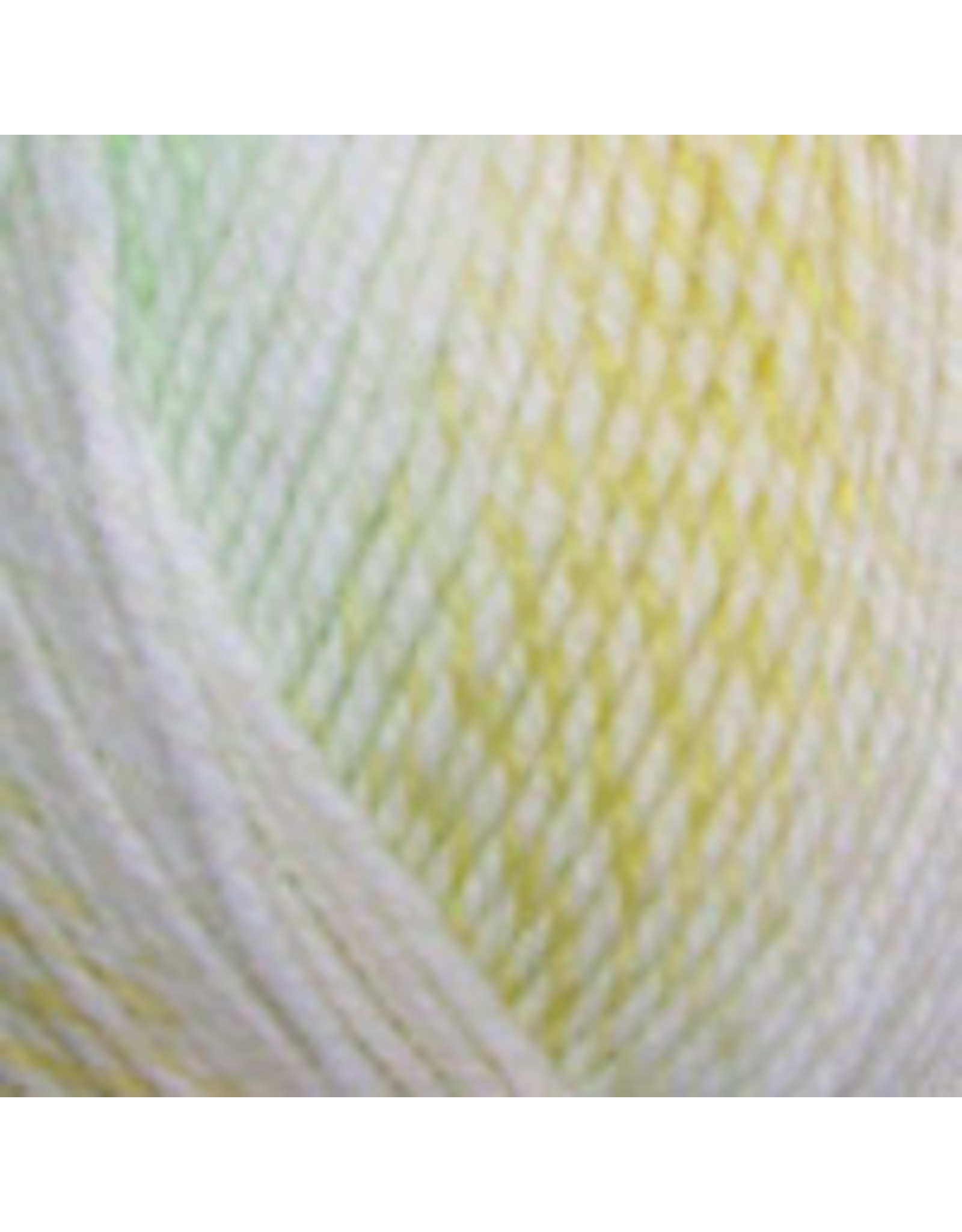 Plymouth Yarn Plymouth: Encore Worsted Colorspun (Kids),