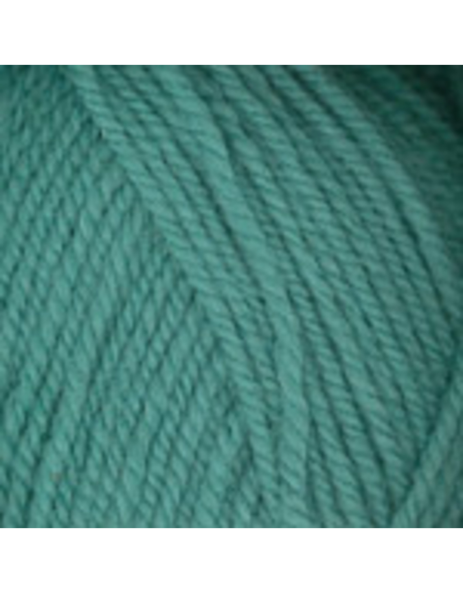 Plymouth Yarn Plymouth: Encore Worsted, (Waters)