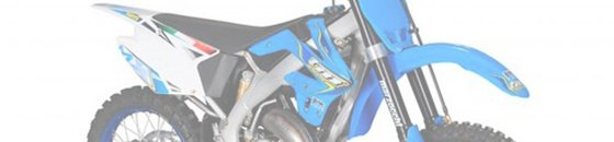 TM Racing 125cc - 2011