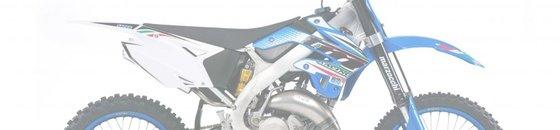 TM Racing 125cc - 2012