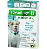 Advantage II Medium Dog, 6 Months