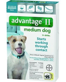 Advantage II Medium Dog, 6 Months