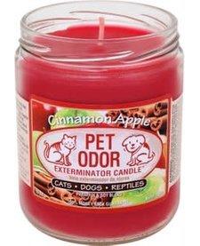 Cinnamon Apple Candle 13 oz