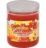 Specialty Pet Apple Pumpkin Candle 13 oz