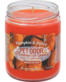 Pumpkin & Spice Candle 13 oz