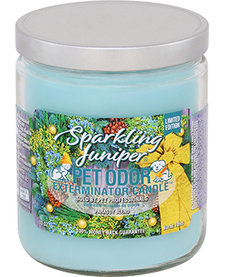 Sparkling Juniper Candle 13 oz