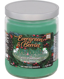 Evergreen & Berries Candle 13 oz
