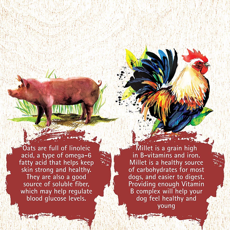 Inception Inception Chicken & Pork 27 lb