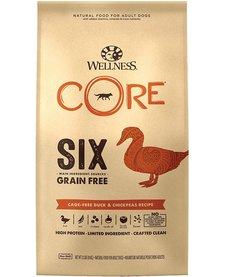 Wellness Core 6 Duck 22 lb