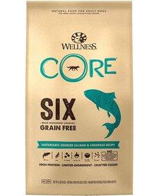 Wellness Core 6 Salmon 22 lb