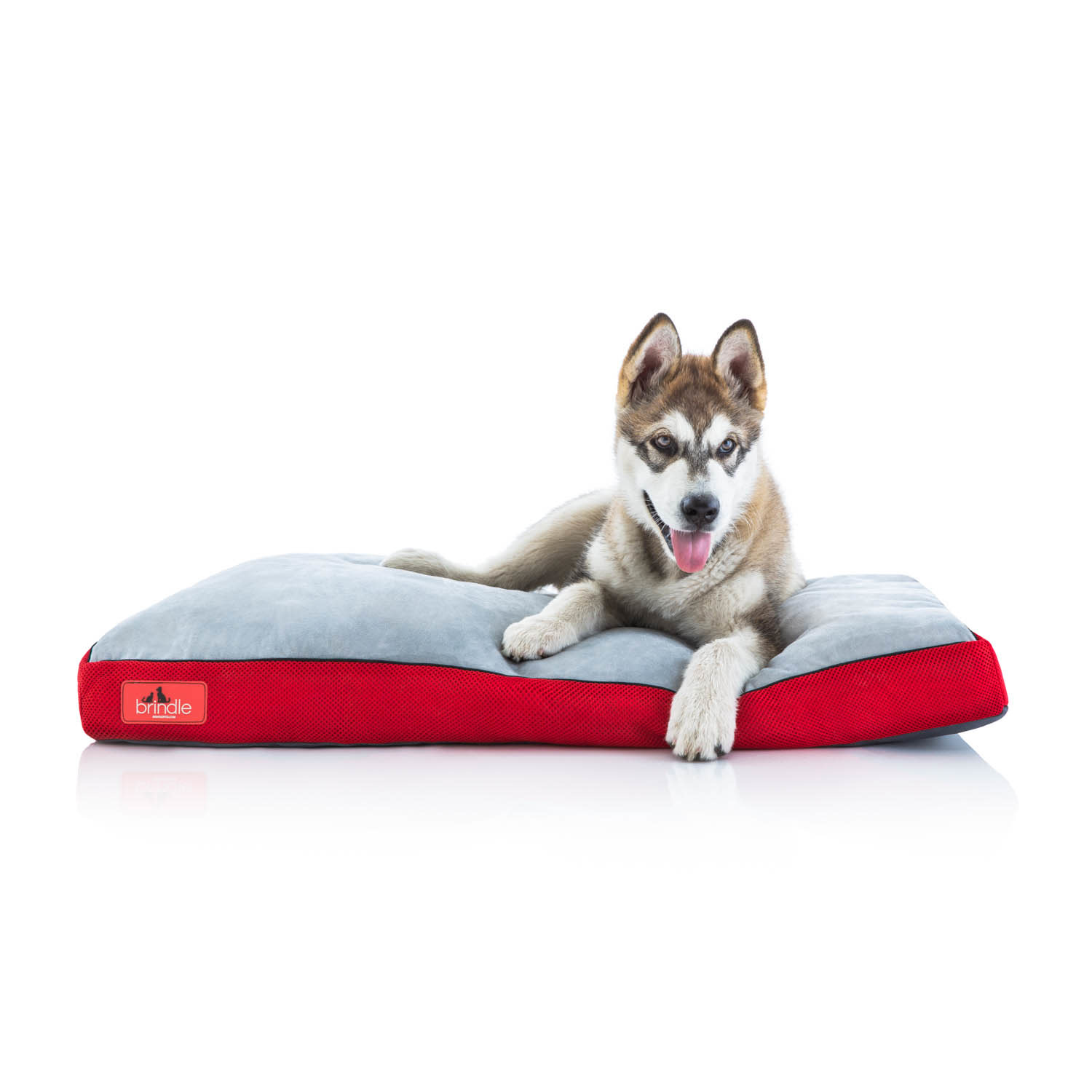 """Brindle Shred Foam Bed 22"""" Red"""