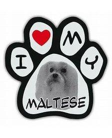 Paw Magnets Maltese