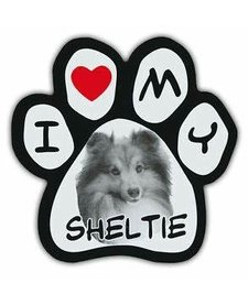 Paw Magnets Sheltie