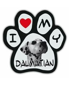 Paw Magnets Dalmatian