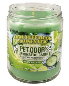 Cool Cucumber & Honeydew Candle