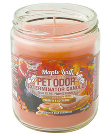 Maple Leaf Candle 13 oz