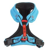 Gooby Gooby Lite Gear Harness Blue XL