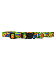 Yellow Dog - Cat Collar - Macaw Red