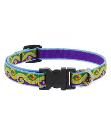 "Lupine Dog Collar Party Time 8""- 12"""