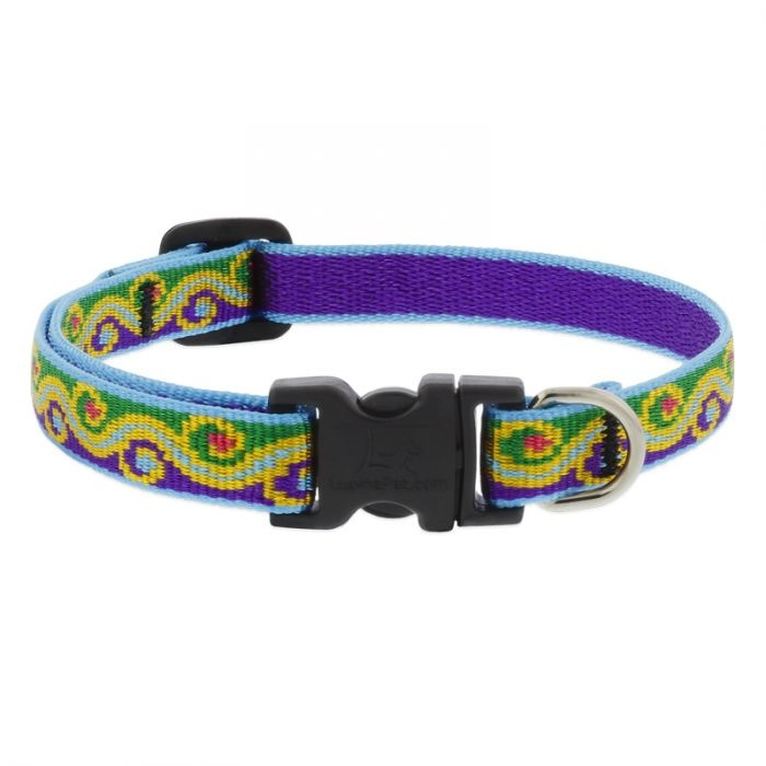 """Lupine Lupine Dog Collar Party Time 10""""- 16"""""""