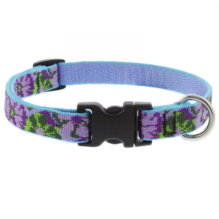 "Lupine Lupine Dog Collar Purple Pansies 9""- 14"""