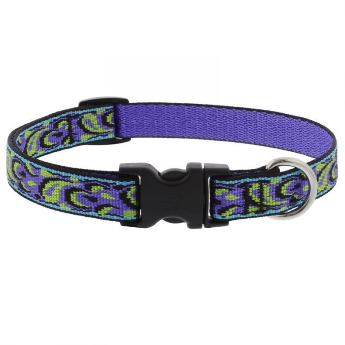 "Lupine Lupine Dog Collar Splash 9""- 14"""