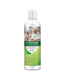 Advantage Dog Shampoo 12oz