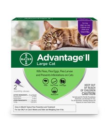 Advantage II Large Cat 2 Pack