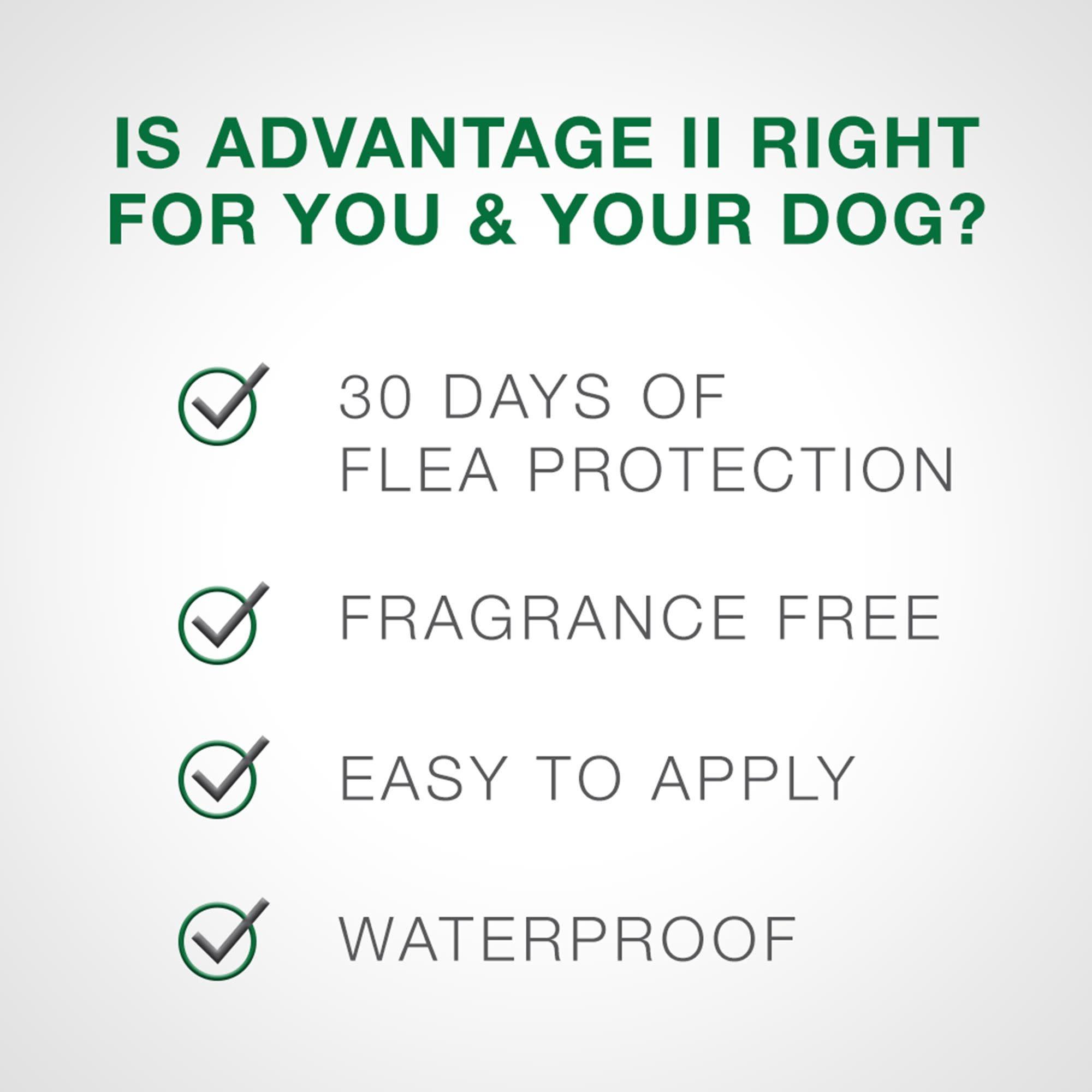 Advantage (Bayer) Advantage II Large Dog, 6 Pack