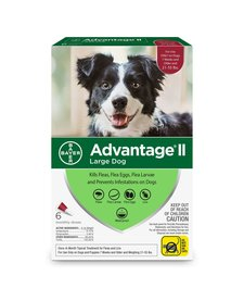 Advantage II Large Dog, 6 Pack